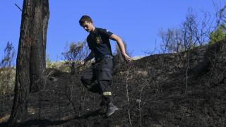 Υπό πλήρη έλεγχο οι πυρκαγιές στην Κερατέα