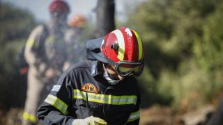 Πυρκαγιά κοντά σε κατοικημένη περιοχή στη Δαφνιώτισσα Αμαλιάδας