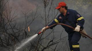 Φωτιά στην Αμαλιάδα: Ενισχύονται οι δυνάμεις, δεν κινδυνεύει ο οικισμός