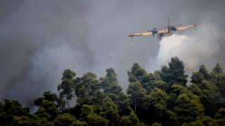 Φωτιά στην Ηλεία: Νέο μέτωπο κοντά στα χωριά Ανάληψη και Γεράκι