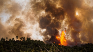 Εξακολουθούν να μαίνονται τα πύρινα μέτωπα στην Ηλεία