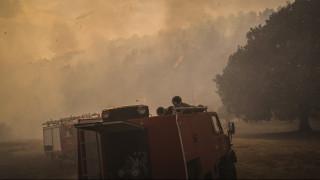 Φωτιά στην Αμαλιάδα: Σε χαράδρα δίνουν οι Πυροσβέστες τη μάχη με τις φλόγες