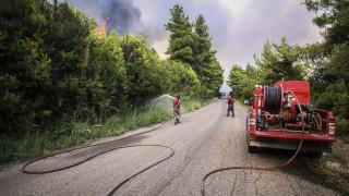 Πάτρα: Σε πλήρη έλεγχο η πυρκαγιά στο Άνω Καστρίτσι