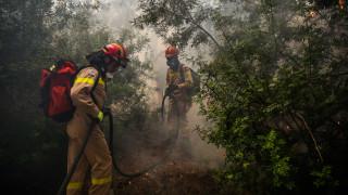 Σε ποιες περιοχές προβλέπεται υψηλός κίνδυνος πυρκαγιάς την Πέμπτη