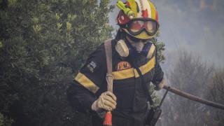 Υπό μερικό έλεγχο η φωτιά στο Λαμπέτι Ηλείας