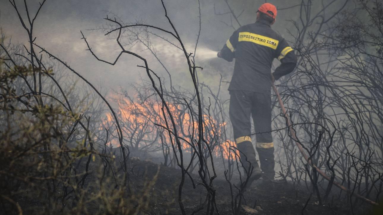 Καλύτερη η εικόνα της μεγάλης πυρκαγιάς στην Κέρκυρα
