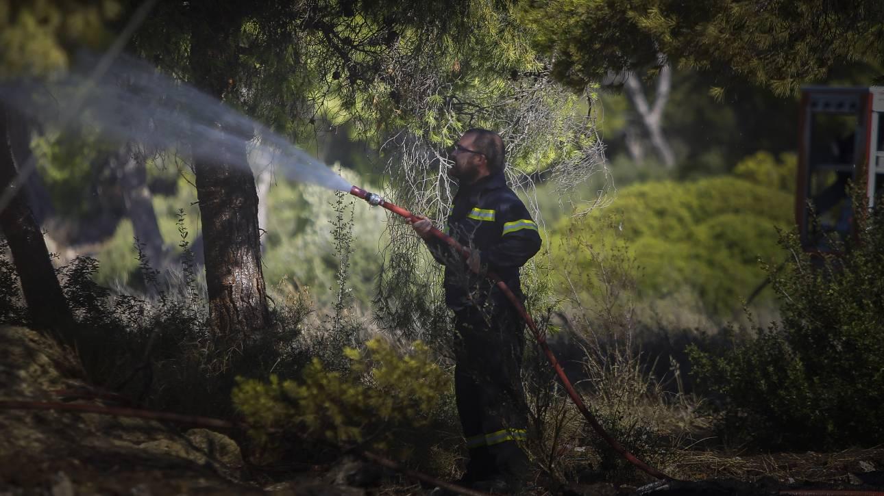 Σε ύφεση η φωτιά στην Κέρκυρα - Επέστρεψαν στα σπίτια τους οι κάτοικοι