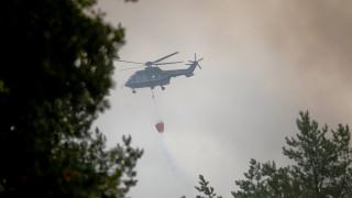 Γερμανία: Δασική πυρκαγιά απειλεί χωριά στα περίχωρα του Πότσδαμ