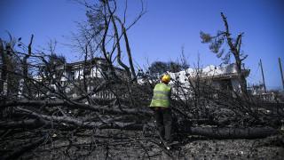 Έναν μήνα μετά την φονική πυρκαγιά: Το Μάτι προσπαθεί να επουλώσει τις πληγές του
