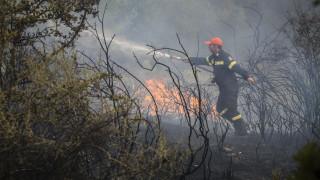 Χαλκίδα: Φωτιά κοντά στην περιοχή Σταυρός