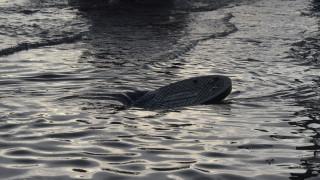 Πλημμύρισαν οι δρόμοι σε δύο περιοχές της Κέρκυρας