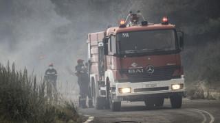 Πυρκαγιά σε βιομηχανία ζωοτροφών στο Σπαθοβούνι Κορινθίας