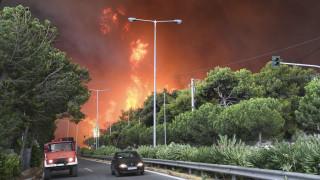 Φωτιά Αττική: Στην Εισαγγελία Πρωτοδικών η δικογραφία για την πυρκαγιά της 23ης Ιουλίου