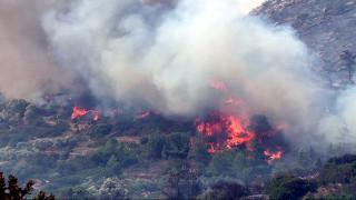 Σε εξέλιξη φωτιά στην περιοχή Αμάδες της Χίου