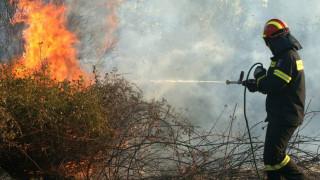 Ζάκυνθος: Σε εξέλιξη πυρκαγιά στο χωριό Αργάσι