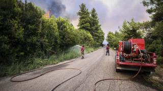 Φωτιά σε ορεινή δασική περιοχή των Γρεβενών