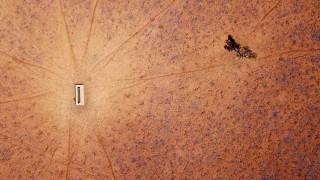 «Καταφύγιο» τα πάρκα του Σίδνεϋ για τα πτηνά λόγω αφόρητης ζέστης και ξηρασίας