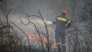 Πυρκαγιά στην περιοχή Κελεφά Λακωνίας