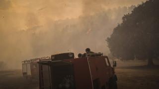 Φωτιά στην Ανατολική Λακωνία: Τραυματίστηκαν δύο πυροσβέστες