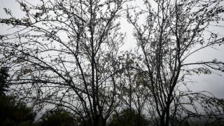 Καιρός: Μικρή πτώση της θερμοκρασίας την Τρίτη