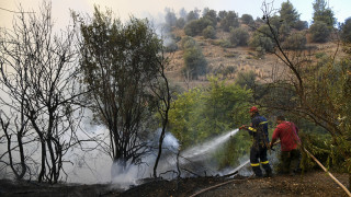 Πυρκαγιά σε έκταση στα Διαβατά Θεσσαλονίκης