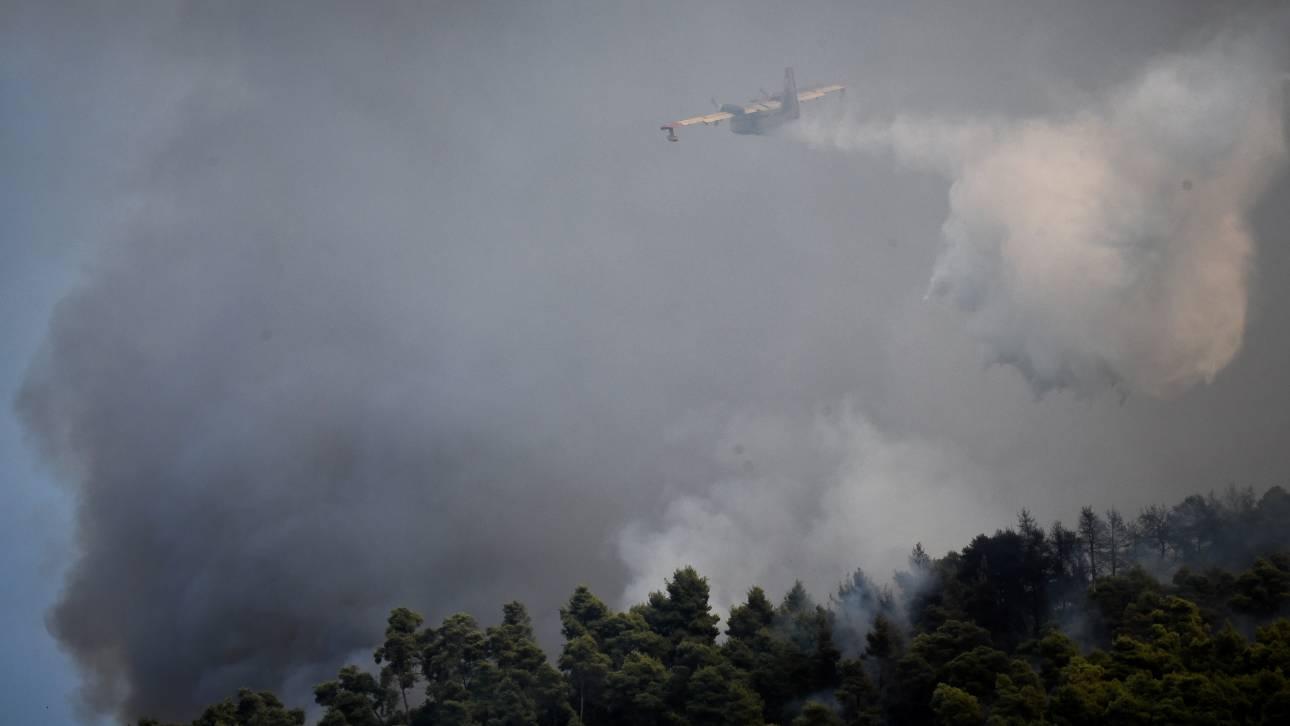 Υπό έλεγχο η φωτιά στη Θεσσαλονίκη