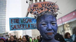 Πρόσληψη security από τους κρεοπώλες στη Γαλλία για προστασία από τους... vegan
