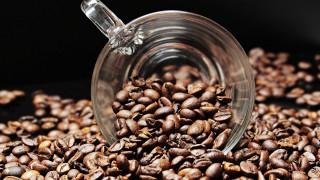 Καφές: Το ρόφημα που έχει κατακτήσει τον κόσμο - Πού παράγεται και πού καταναλώνεται (infographic)