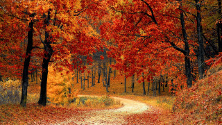 Την Κυριακή ξεκινά και επίσημα το φθινόπωρο