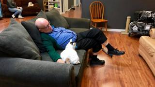Συγκέντρωσε 30.000 δολάρια, απλά με το να... κοιμάται αγκαλιά με γάτες (pics)