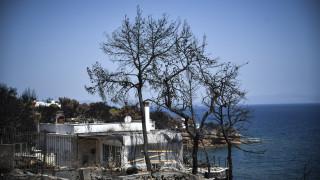Φωτιά Αττική: Χορήγηση voucher σε γονείς των πυρόπληκτων περιοχών