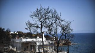 Έρευνα για Μάτι: Υπαναχώρηση από την εισαγγελέα του Αρείου Πάγου μετά τις αντιδράσεις