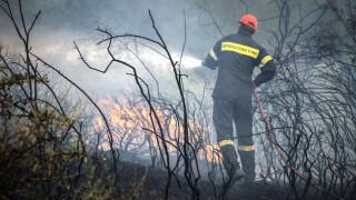 Συναγερμός στην Πυροσβεστική: Δύο φωτιές στην Ηλεία