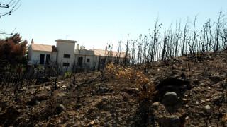 Φωτιά Μάτι: Εισαγγελική παρέμβαση μετά από καταγγελίες για κακοδιαχείριση στον Μαραθώνα