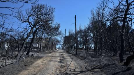 «Δεν ξέρω με ποιον να θυμώσω»: Συγκλονίζει ο πυροσβέστης που έχασε την οικογένειά του στο Μάτι