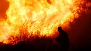 Μεγάλη πυρκαγιά στο Σχινιά Αττικής