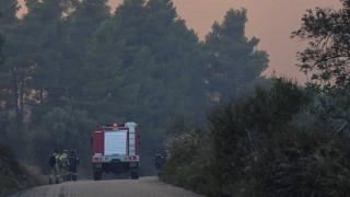 Συναγερμός στην Πυροσβεστική: Φωτιά στην Ηλεία