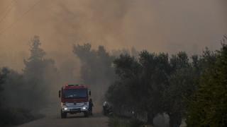 Ανεξέλεγκτη φωτιά στην Κεφαλονιά – Εκκενώθηκε οικισμός