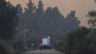 Φωτιές σε Κεφαλονιά και Αχαΐα: Καλύτερη η εικόνα στα πύρινα μέτωπα