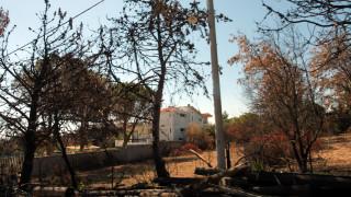 «Καθαρό» το Μάτι λέει το Εθνικό Αστεροσκοπείο Αθηνών