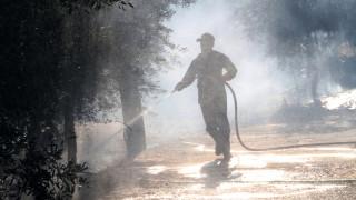 Σε ύφεση η φωτιά στην Κέρκυρα - Επιστρέφουν οι κάτοικοι του οικισμού Βίγγλα