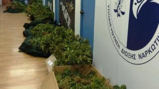 Αποκλειστικό: Αναρρωτική και γονική άδεια είχαν πάρει οι αστυνομικοί για να πωλούν ναρκωτικά