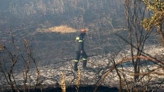 Φωτιά σε δύσβατη περιοχή του χωριού Σκρα Κιλκίς