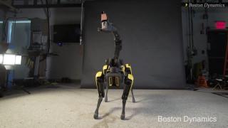 Ο... καυτός χορός του «σκύλου» - ρομπότ