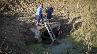 Πρέβεζα: Άνδρες της ΕΜΑΚ «σαρώνουν» το σημείο όπου βρέθηκε το ανθρώπινο κρανίο