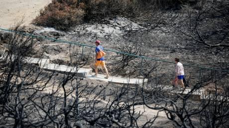 Αποκαλυπτικό πόρισμα 182 σελίδων για την φονική πυρκαγιά στην ανατολική Αττική