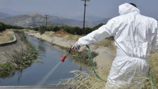 Αυξάνονται οι νεκροί από τον ιό του Δυτικού Νείλου