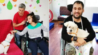 Θεραπεία με τη βοήθεια των ζώων: Μια πρωτοποριακή μέθοδος με ευεργετικά οφέλη για ψυχικά ασθενείς