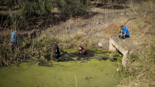 Πρέβεζα: Νέο στοιχείο δείχνει σε ποιον ανήκει το κρανίο που βρέθηκε στην ΒΙΠΕ