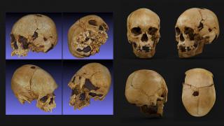 Βραζιλία: Διαλυμένο μέσα στα αποκαΐδια του Εθνικού Μουσείου βρέθηκε το κρανίο της «Λουτσία»